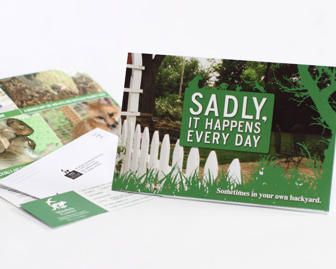 sadly promotional mailer print design by ocreations in pittsburgh