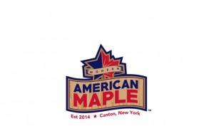 pittsburgh-branding-logos-modern-american-maple