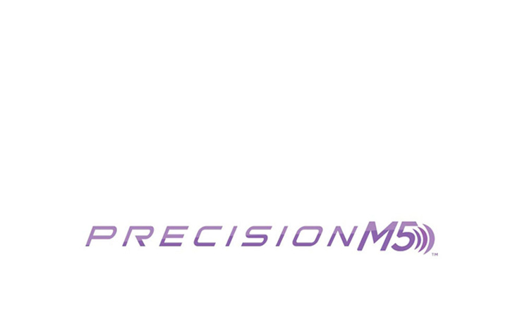 pittsburgh-branding-logos-precision-m5