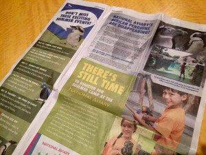 pitssburgh-print-design-aviary-tribune-ad