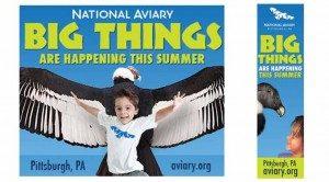 pittsburgh-design-web-ads-national-aviary