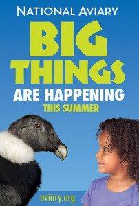 pittsburgh-environmental-graphics-bus-shelter-aviary