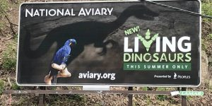 OCREATIONS COLLABORATES WITH THE NATIONAL AVIARY SUMMER CAMPAIGN