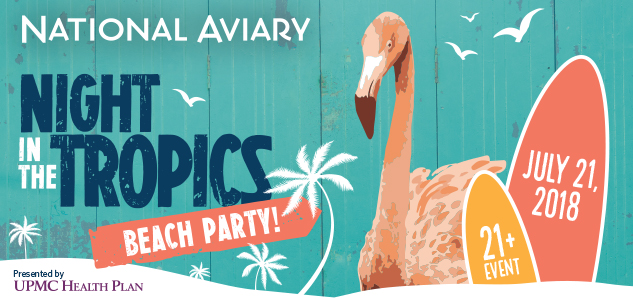 National Aviary Night in the Tropics 2018 Digital Ad