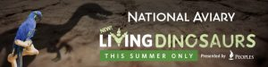 National Aviary 2019 summer campaign living dinosaurs digital ads
